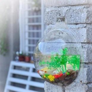 Akrilna posoda akvarij ali lonček, ki se pritrdi na steno